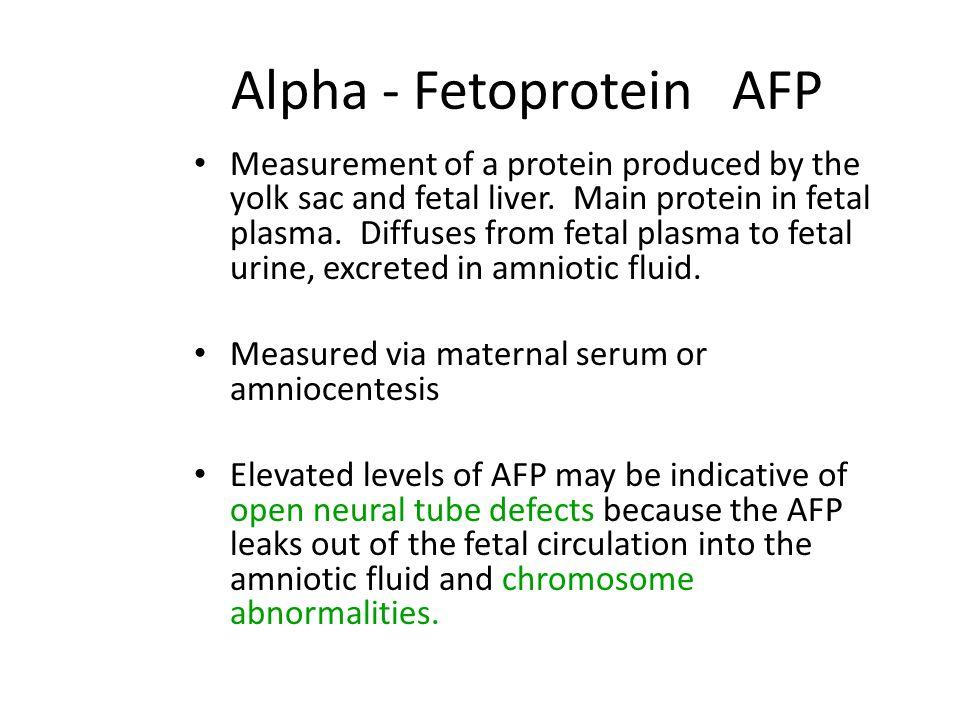 Alpha - Fetoprotein AFP