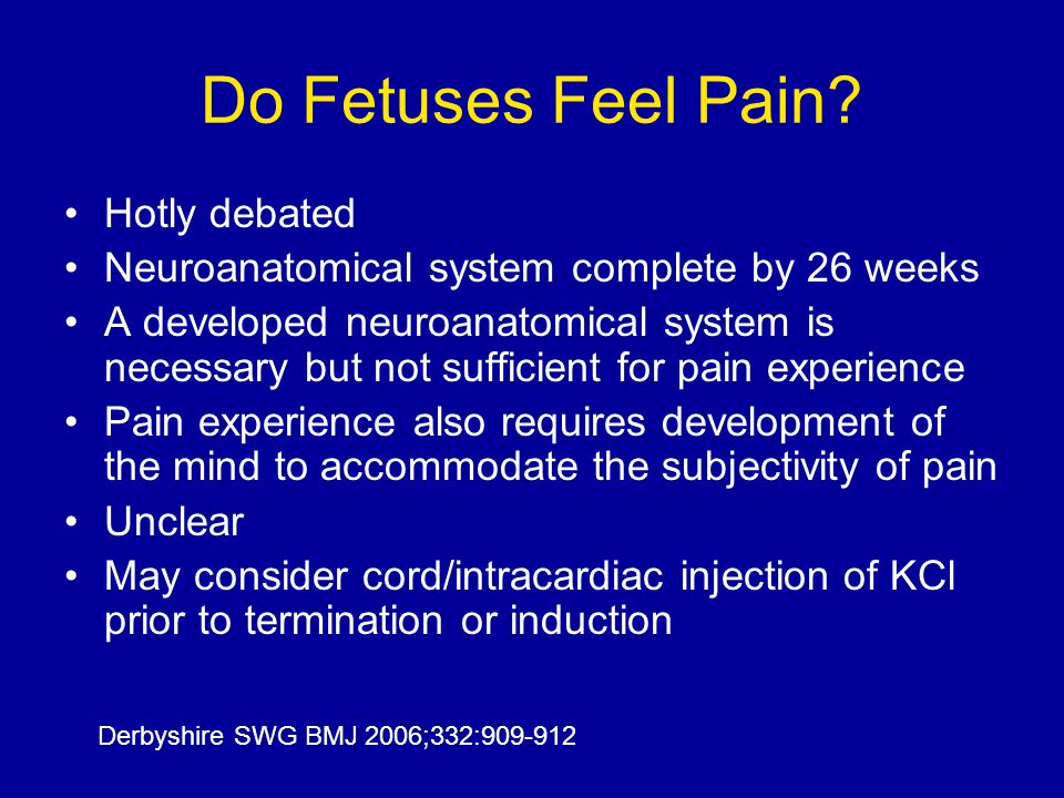 Do Fetuses Feel Pain Hotly debated
