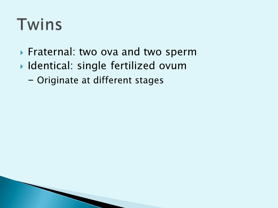 Twins Fraternal: two ova and two sperm