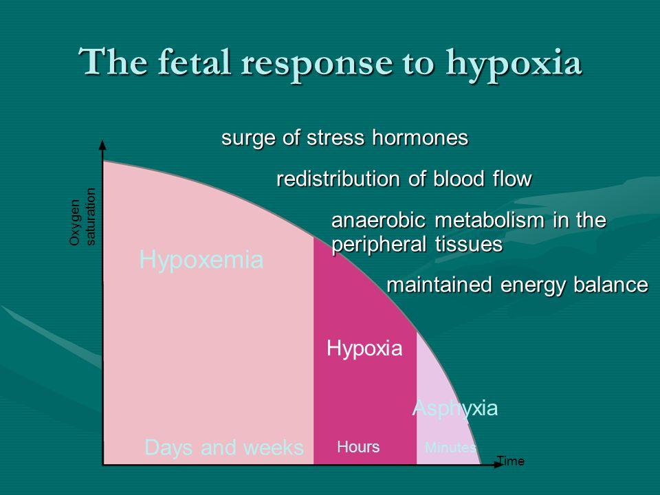The fetal response to hypoxia