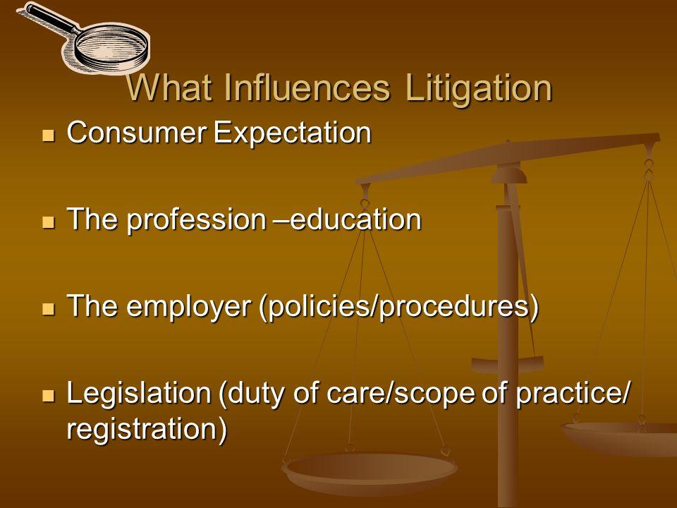 What Influences Litigation