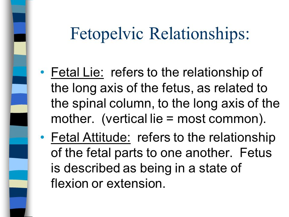 Fetopelvic Relationships: