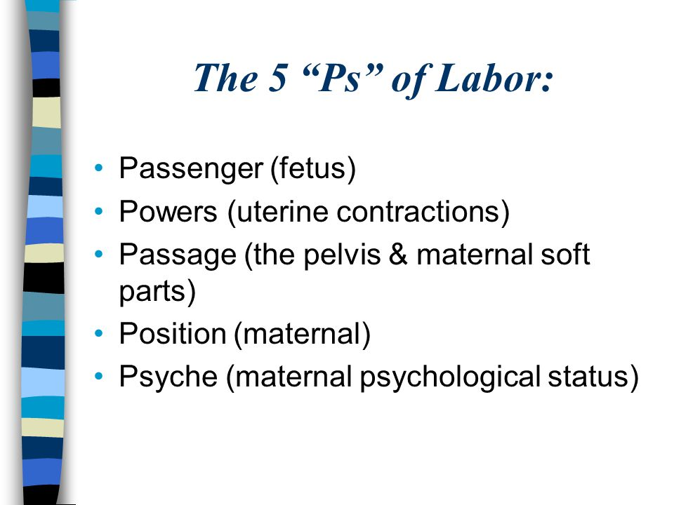 The 5 Ps of Labor: Passenger (fetus) Powers (uterine contractions)