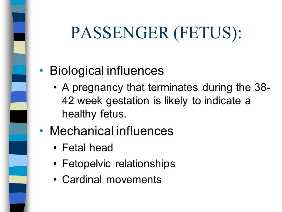 PASSENGER (FETUS): Biological influences Mechanical influences