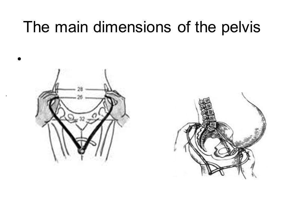 The main dimensions of the pelvis