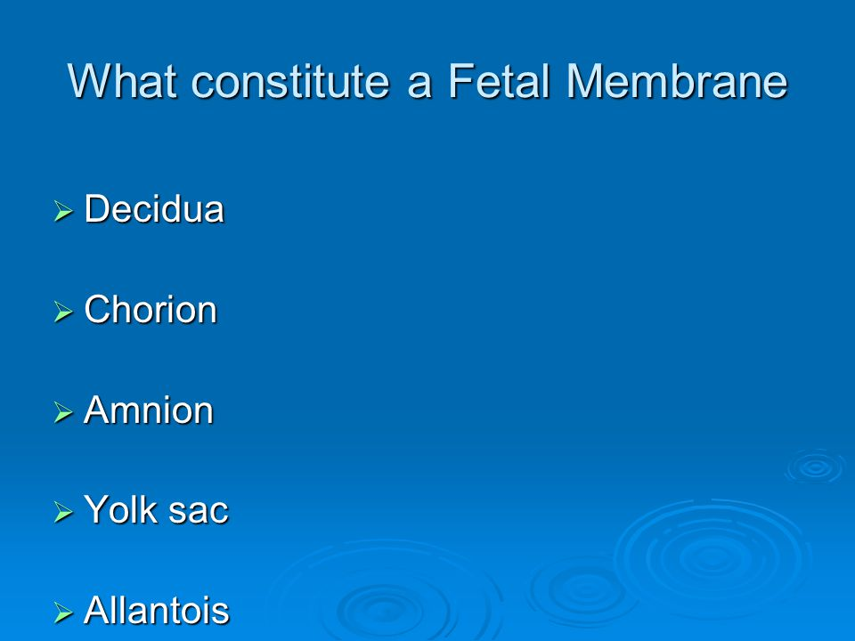 What constitute a Fetal Membrane