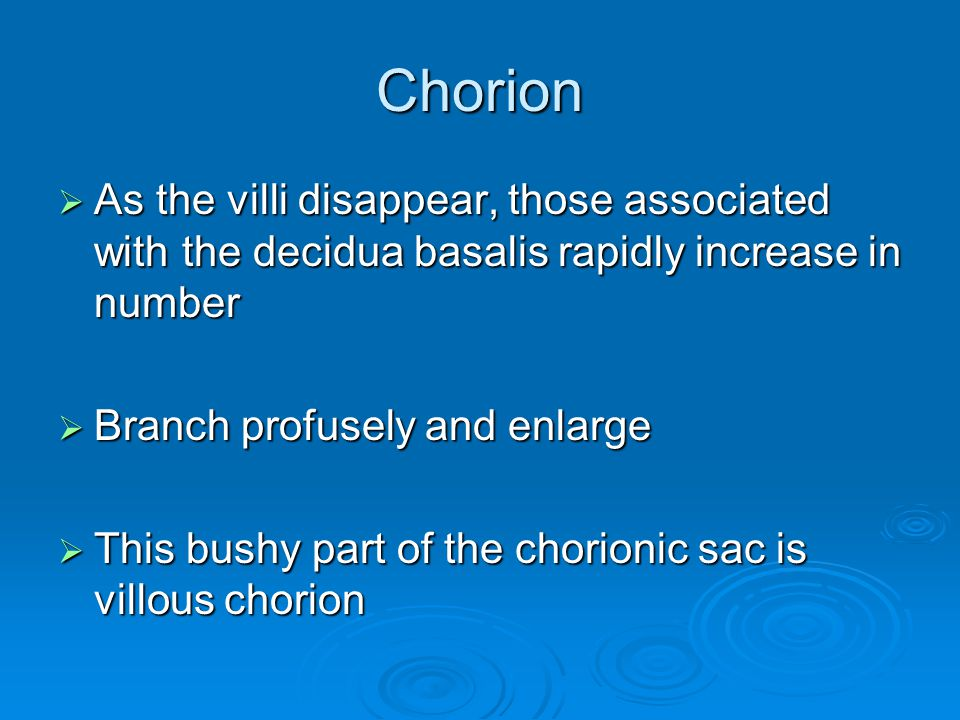 Chorion As the villi disappear, those associated with the decidua basalis rapidly increase in number.