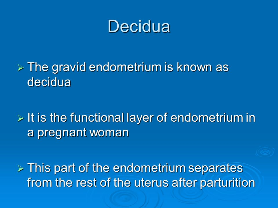 Decidua The gravid endometrium is known as decidua