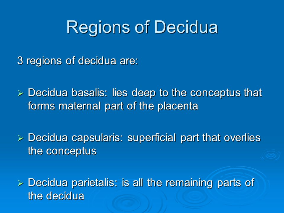 Regions of Decidua 3 regions of decidua are: