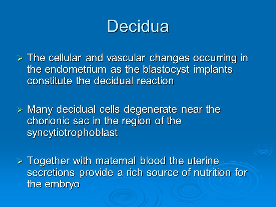 Decidua The cellular and vascular changes occurring in the endometrium as the blastocyst implants constitute the decidual reaction.