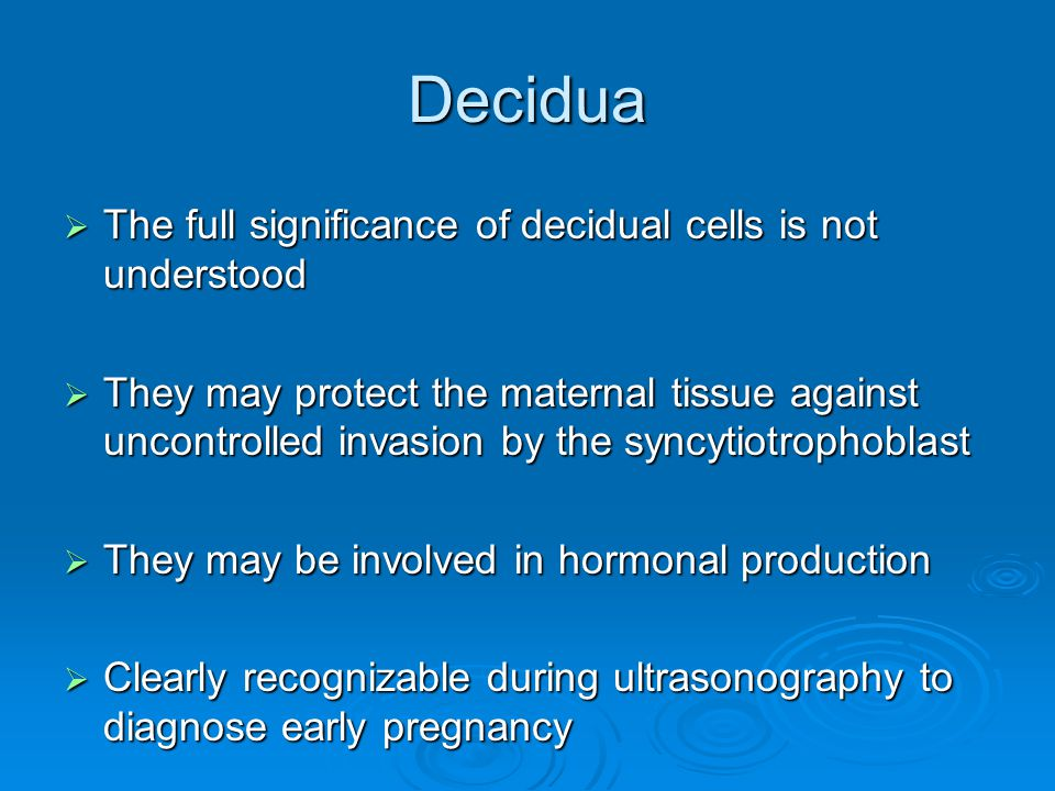 Decidua The full significance of decidual cells is not understood
