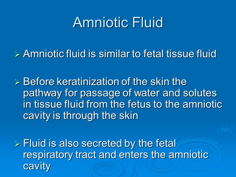Amniotic Fluid Amniotic fluid is similar to fetal tissue fluid