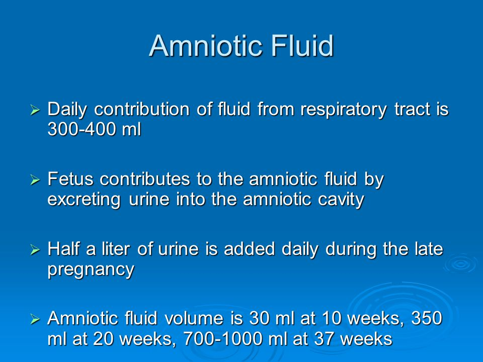 Amniotic Fluid Daily contribution of fluid from respiratory tract is 300-400 ml.