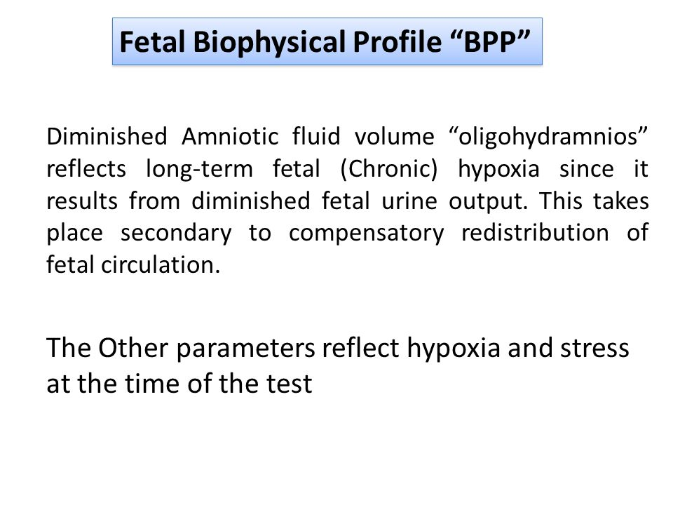 Fetal Biophysical Profile BPP