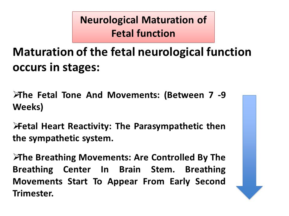 Neurological Maturation of Fetal function