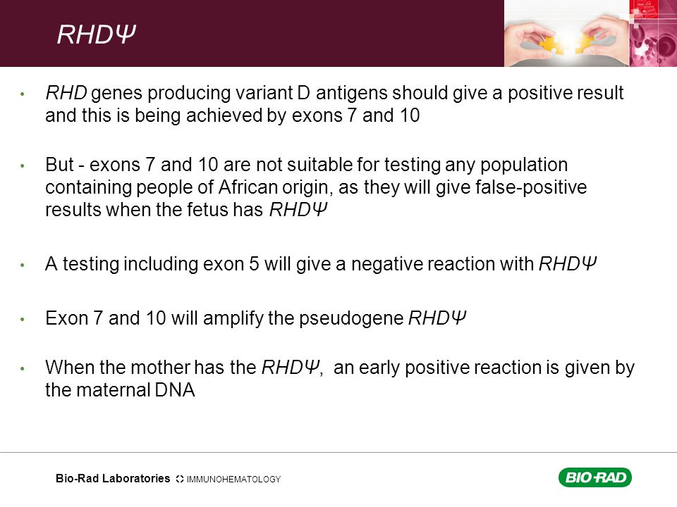 RHDΨ RHD genes producing variant D antigens should give a positive result and this is being achieved by exons 7 and 10.