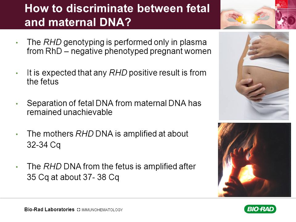 How to discriminate between fetal and maternal DNA