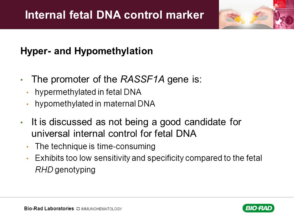Internal fetal DNA control marker