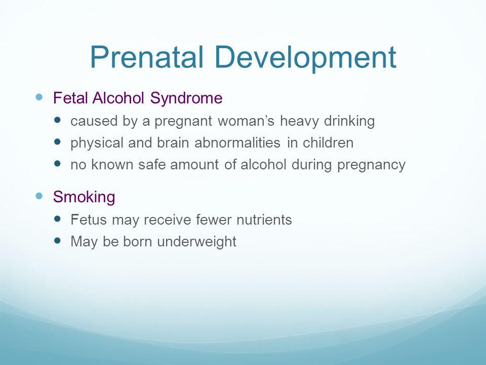 Prenatal Development Fetal Alcohol Syndrome Smoking