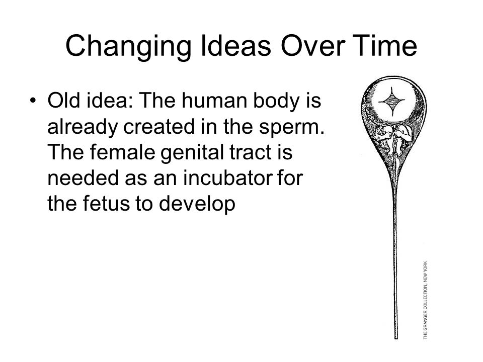 Changing Ideas Over Time