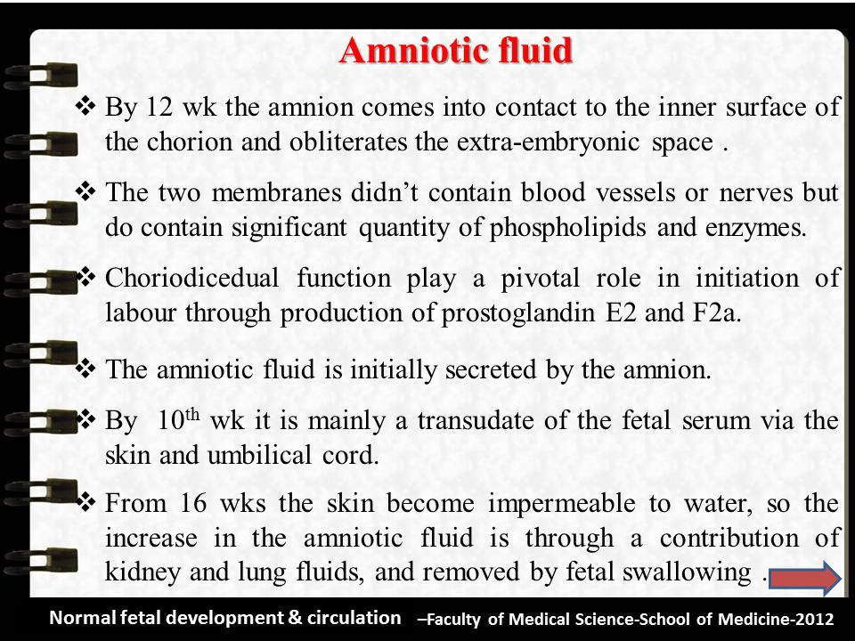 Amniotic fluid By 12 wk the amnion comes into contact to the inner surface of the chorion and obliterates the extra-embryonic space .