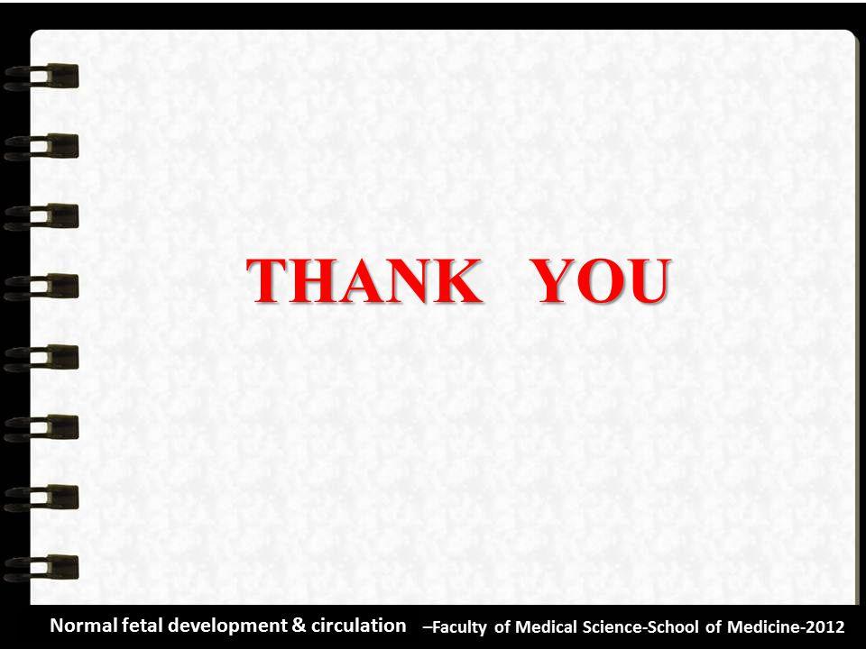 THANK YOU Normal fetal development & circulation