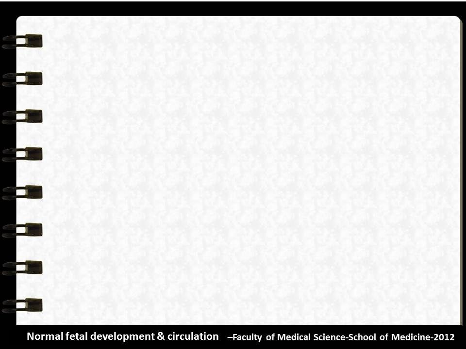 Normal fetal development & circulation