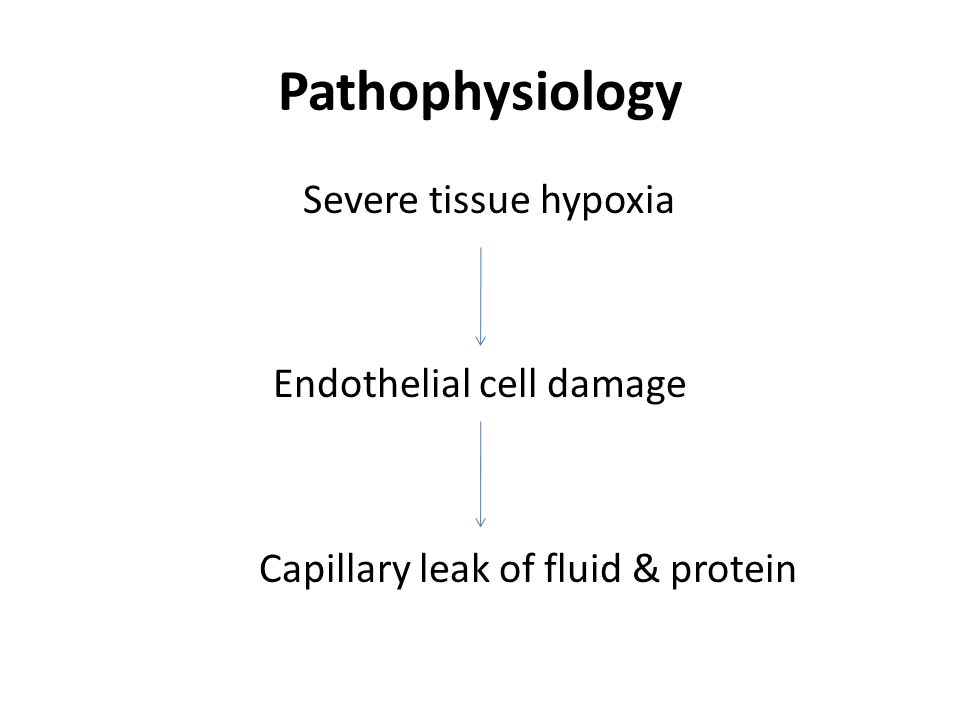 Pathophysiology Severe tissue hypoxia Endothelial cell damage Capillary leak of fluid & protein
