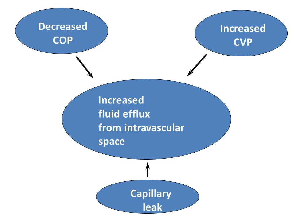Decreased COP Increased CVP Increased fluid efflux from intravascular space Capillary leak