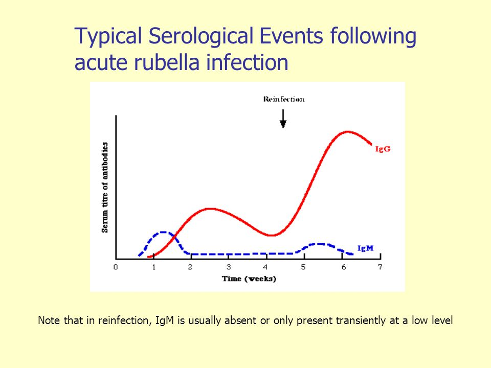 Typical Serological Events following acute rubella infection