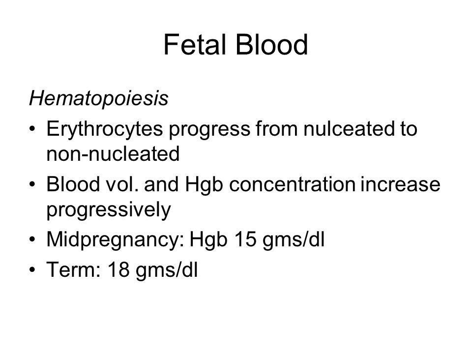 Fetal Blood Hematopoiesis