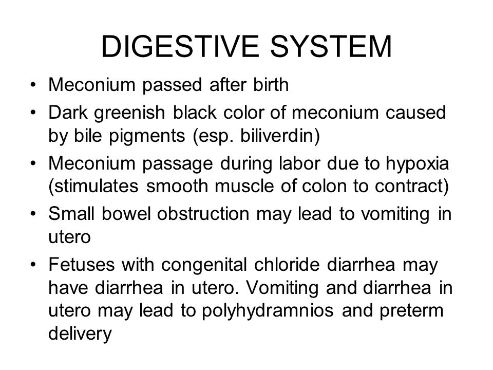 DIGESTIVE SYSTEM Meconium passed after birth