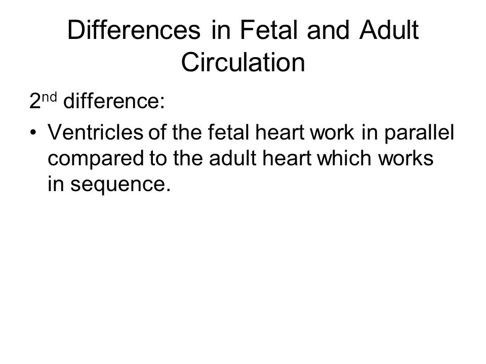 Differences in Fetal and Adult Circulation