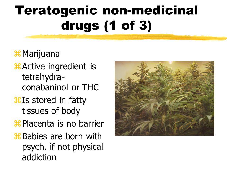 Teratogenic non-medicinal drugs (1 of 3)