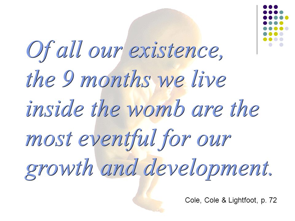 Of all our existence, the 9 months we live inside the womb are the most eventful for our growth and development.
