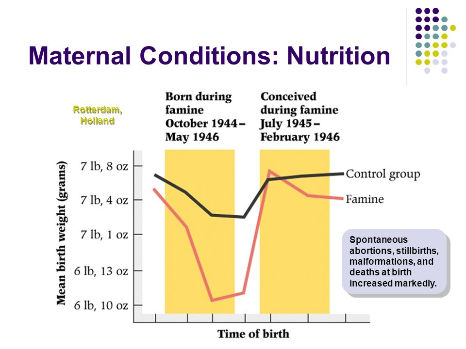 Maternal Conditions: Nutrition
