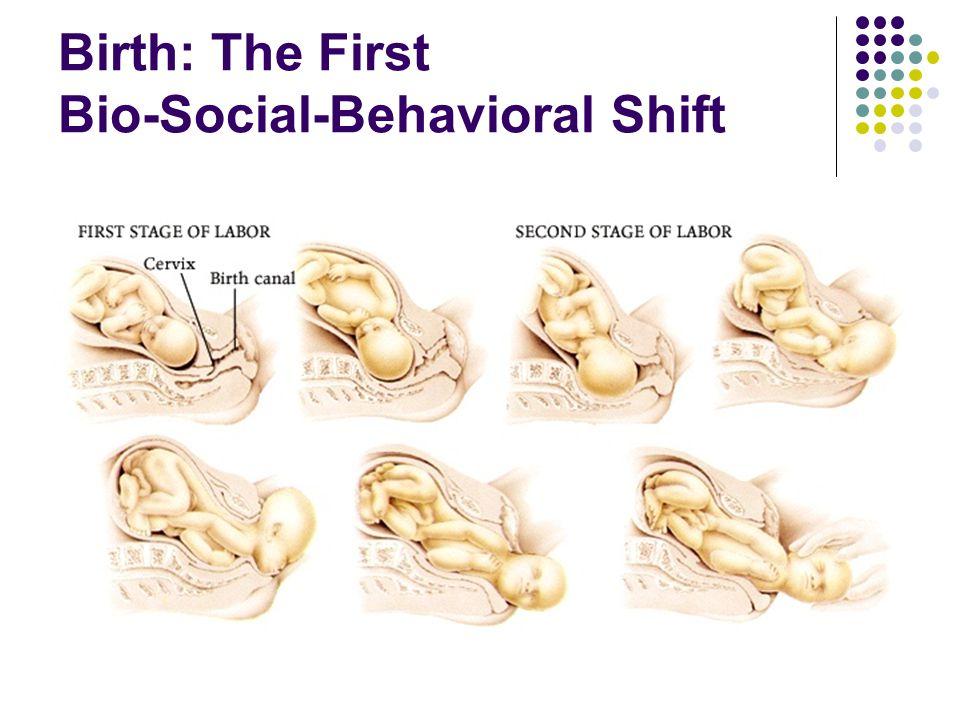 Birth: The First Bio-Social-Behavioral Shift