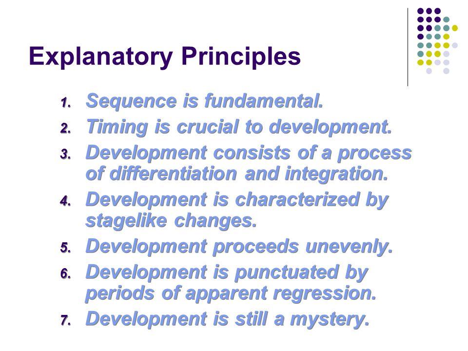 Explanatory Principles