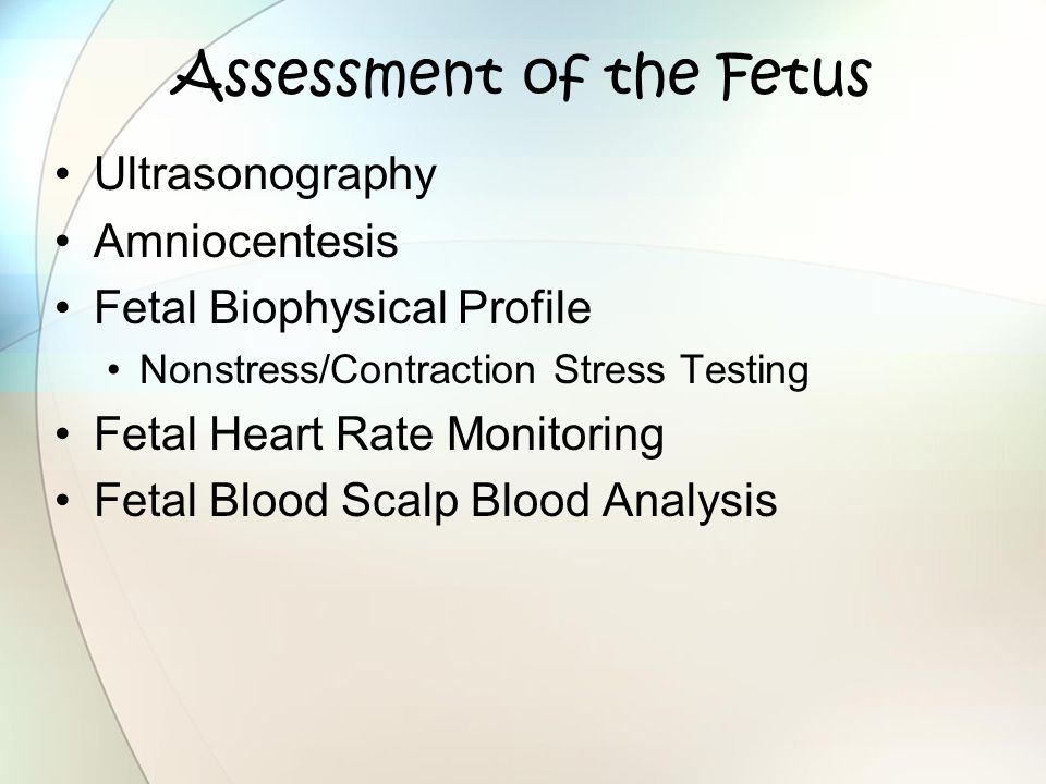 Assessment of the Fetus