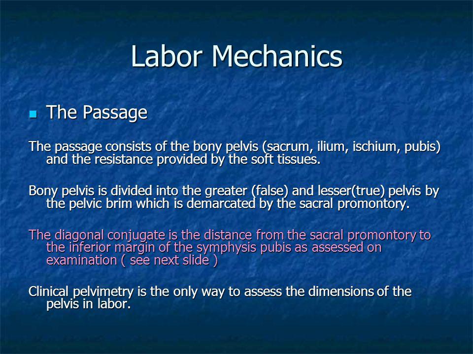Labor Mechanics The Passage
