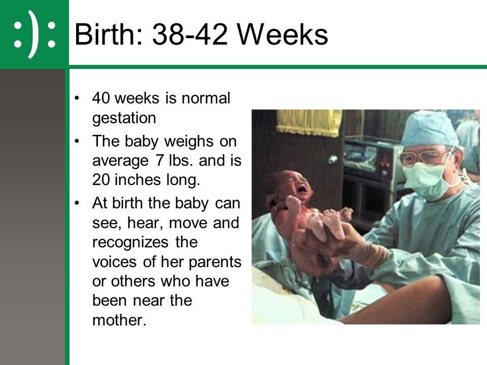 Birth: 38-42 Weeks 40 weeks is normal gestation