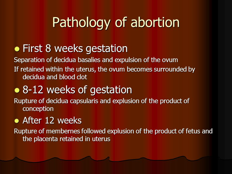 Pathology of abortion First 8 weeks gestation 8-12 weeks of gestation