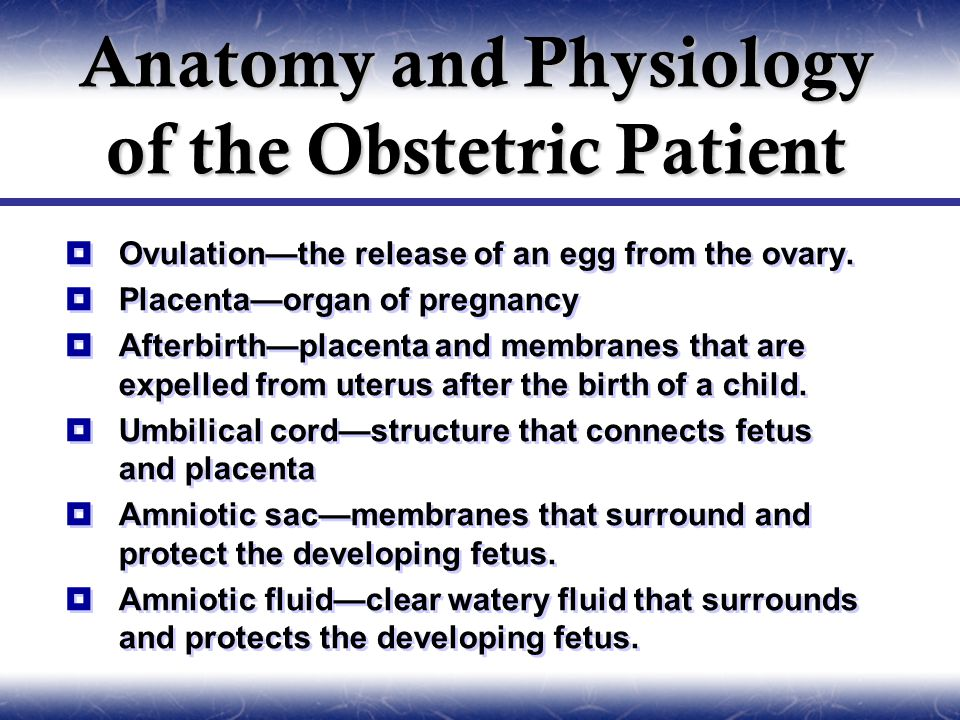 Anatomy and Physiology of the Obstetric Patient