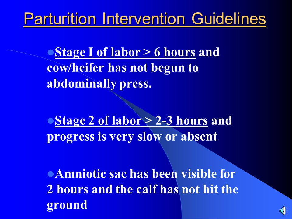 Parturition Intervention Guidelines