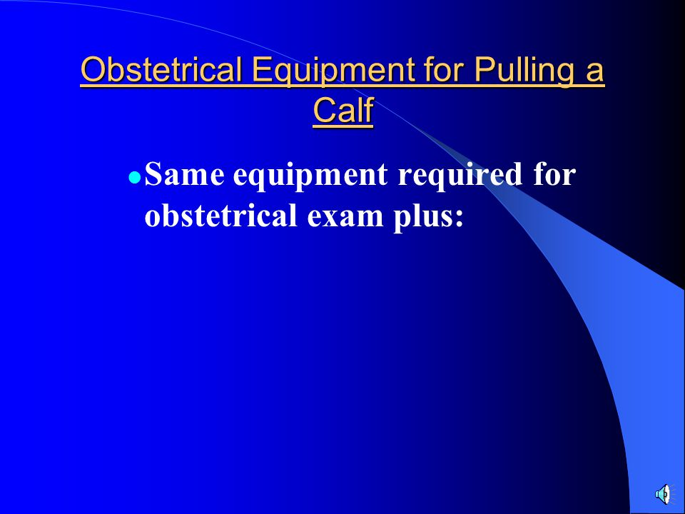 Obstetrical Equipment for Pulling a Calf