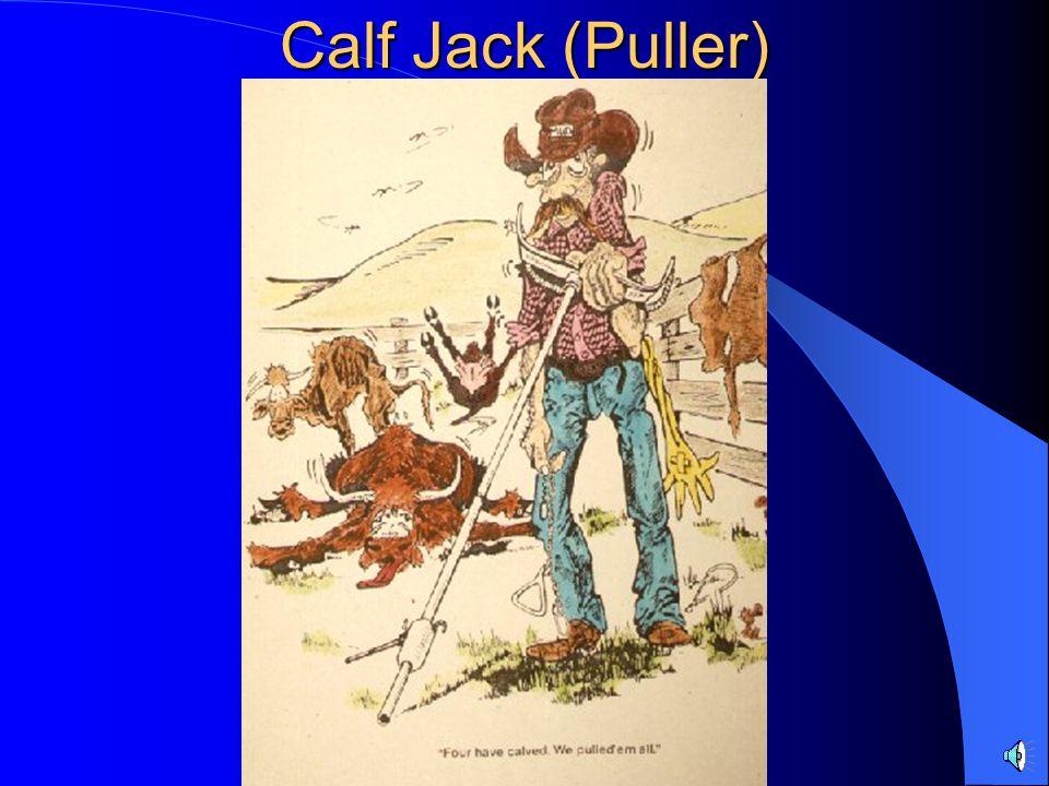 Calf Jack (Puller)