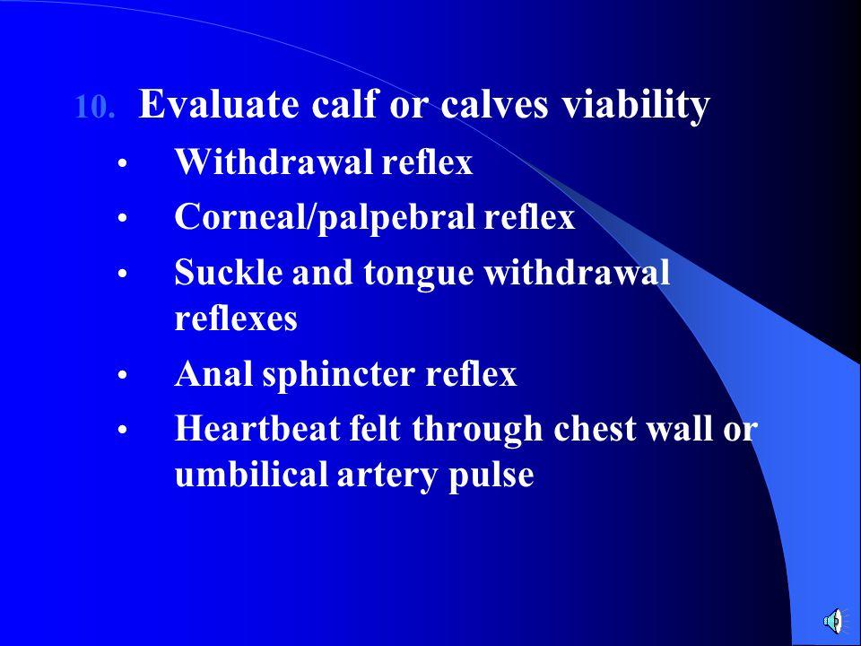 Evaluate calf or calves viability