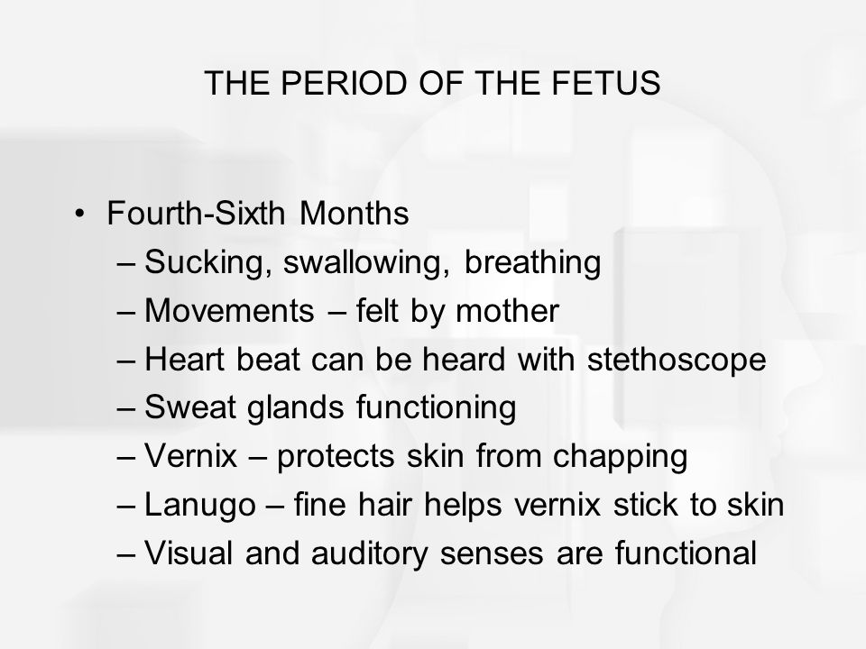 THE PERIOD OF THE FETUS Fourth-Sixth Months. Sucking, swallowing, breathing. Movements – felt by mother.