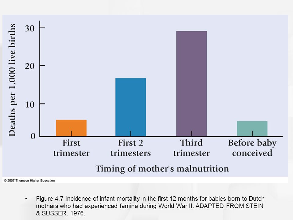 Figure 4.7 Incidence of infant mortality in the first 12 months for babies born to Dutch mothers who had experienced famine during World War II.