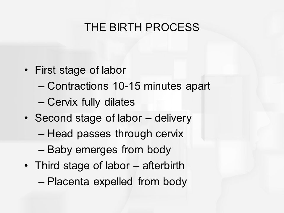 THE BIRTH PROCESS First stage of labor. Contractions 10-15 minutes apart. Cervix fully dilates. Second stage of labor – delivery.
